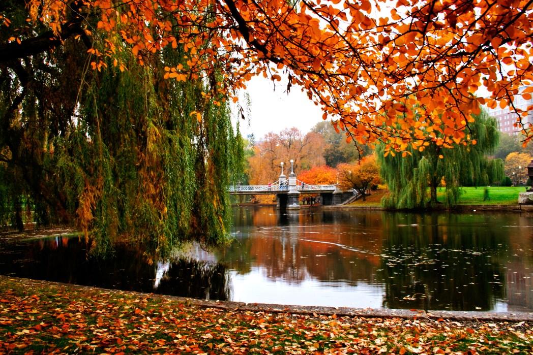 Boston cosa vedere: Parco pubblico