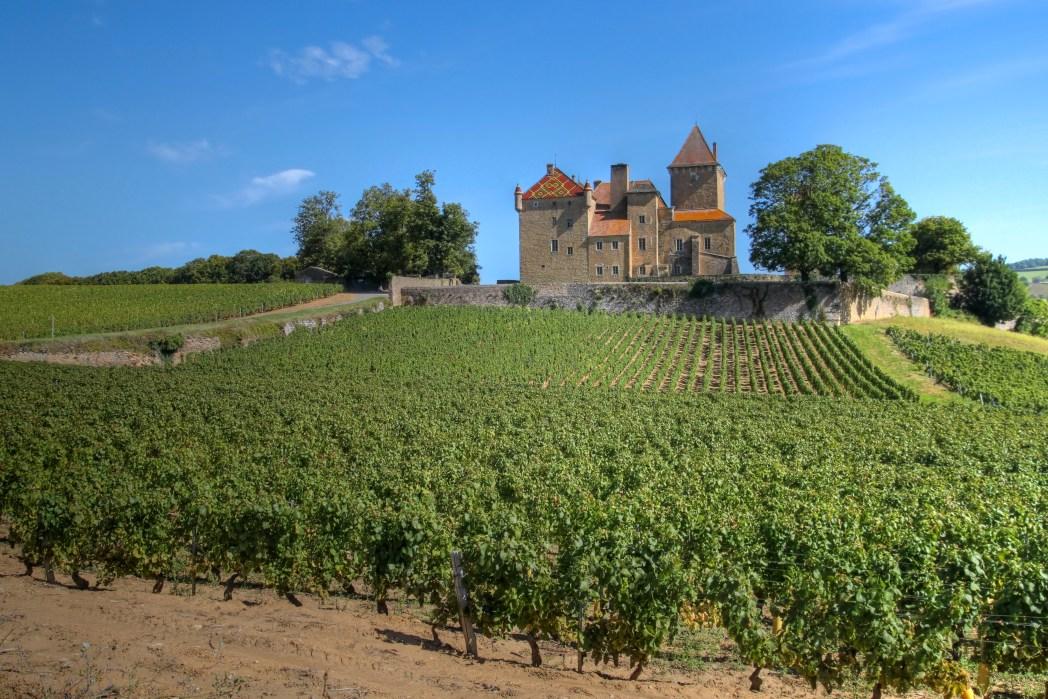 Vigneti della Borgogna
