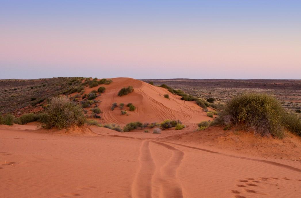 Il deserto australiano