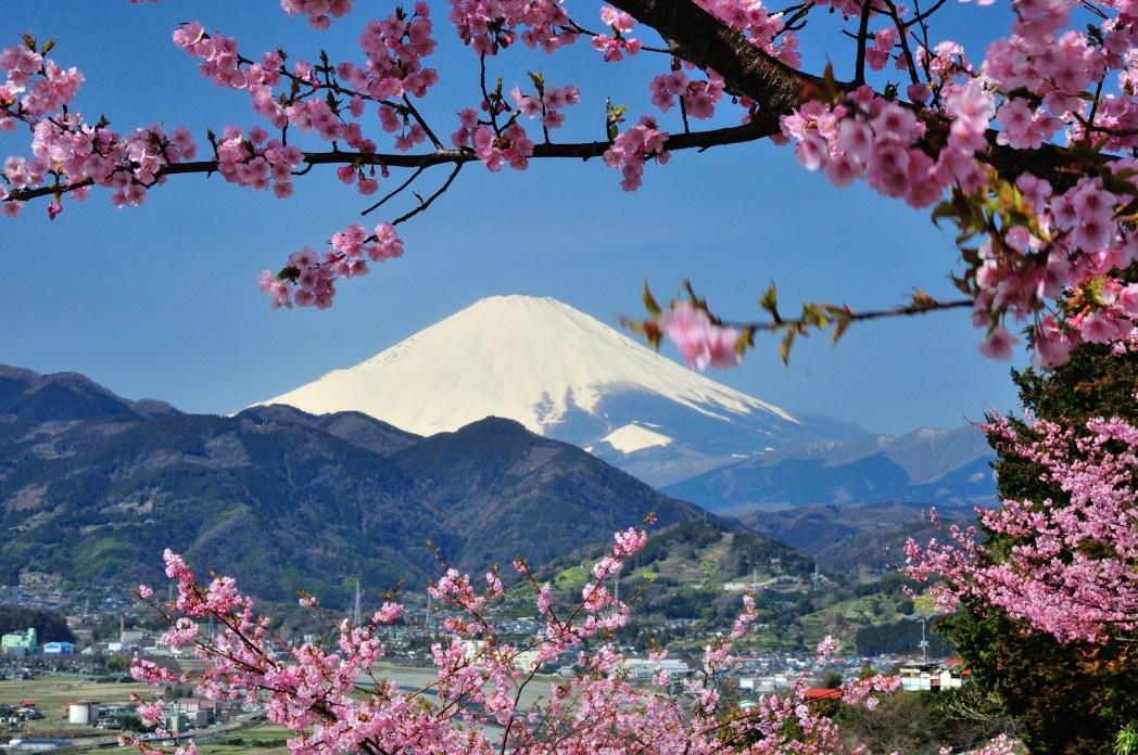 Viaggio in Giappone: Monte Fuji
