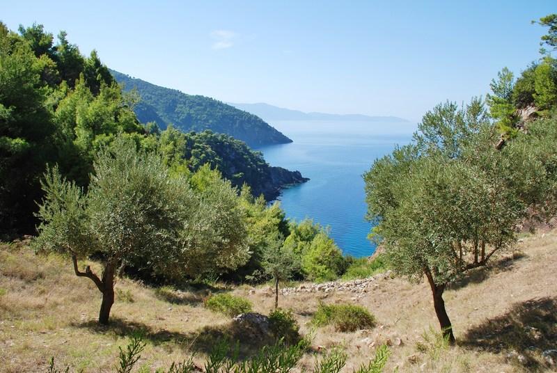 Isole greche più belle: Alonissos