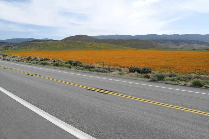 America Antelope Valley Freeway