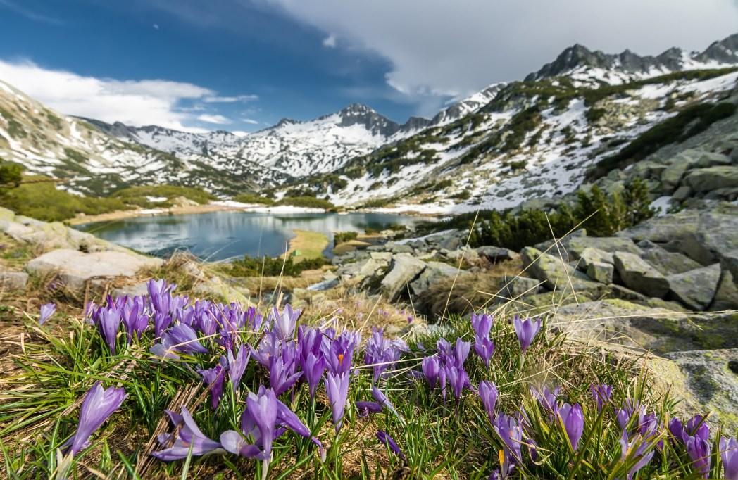 Montagne balcaniche