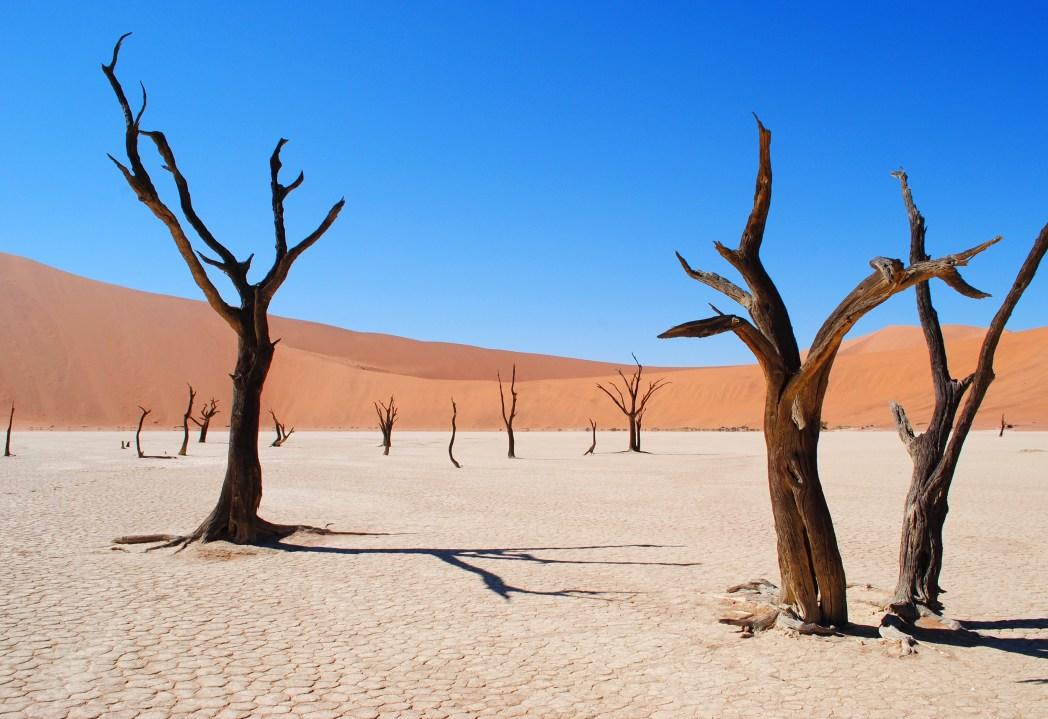 Namibia- un pan vicino a Sossuvlei