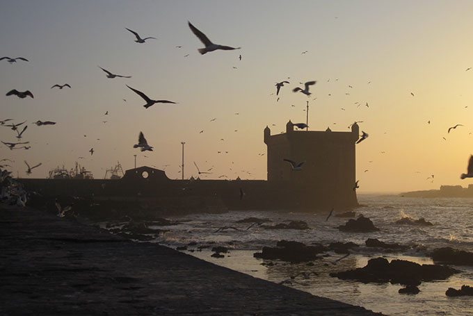 Essaouira © Lewis Packwood