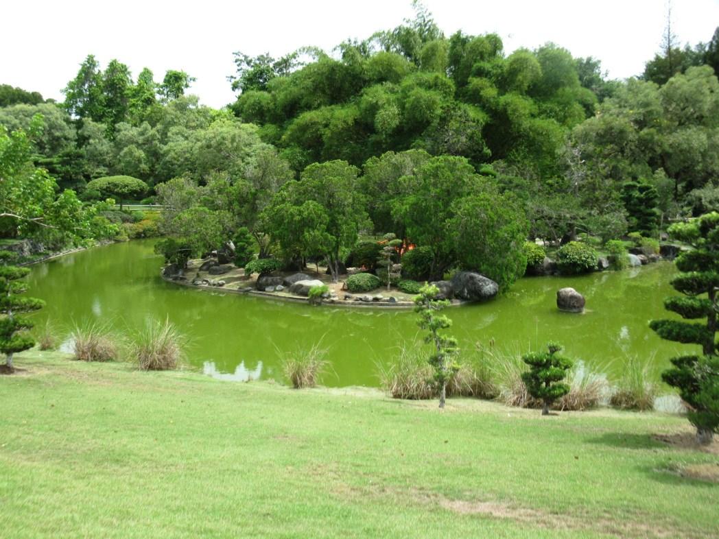 Vista del Giardino Botanico di Santo Domingo