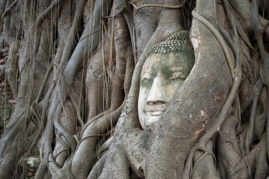 Bangkok dintorni: Ayutthaya