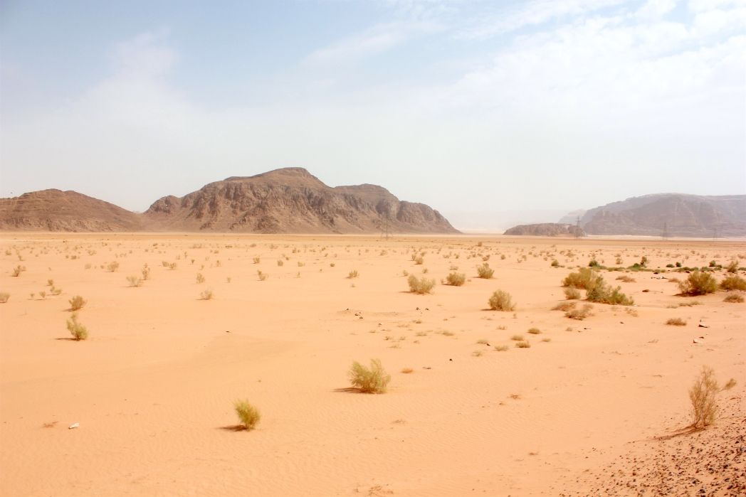 Wadi rum, desert