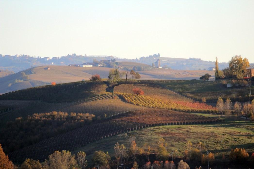 Patrimonio UNESCO da visitare in Italia: Langhe e Roero