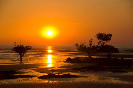 paesaggio Australia.jpg