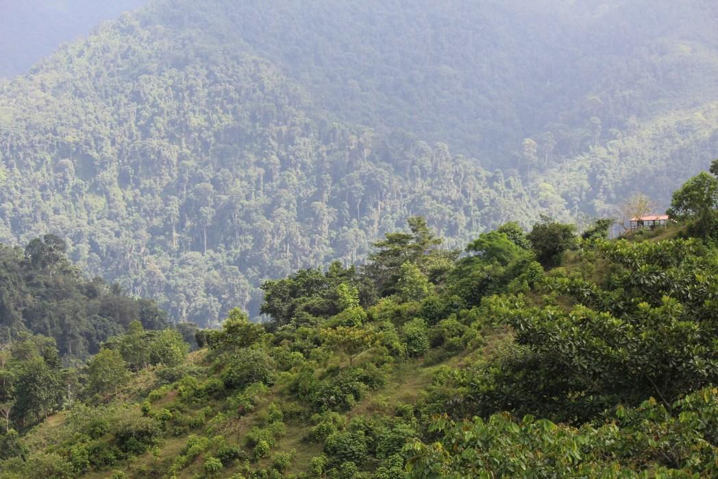 Cosa vedere in Colombia: Parque Tayrona
