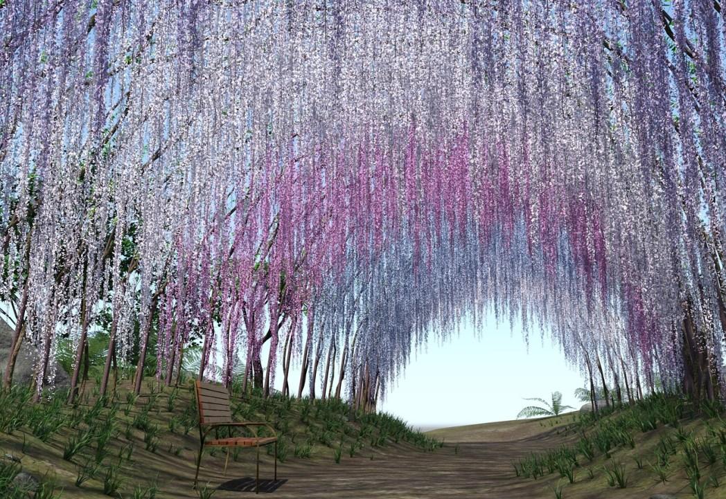 Viaggio in Giappone: Wisteria Tunnel